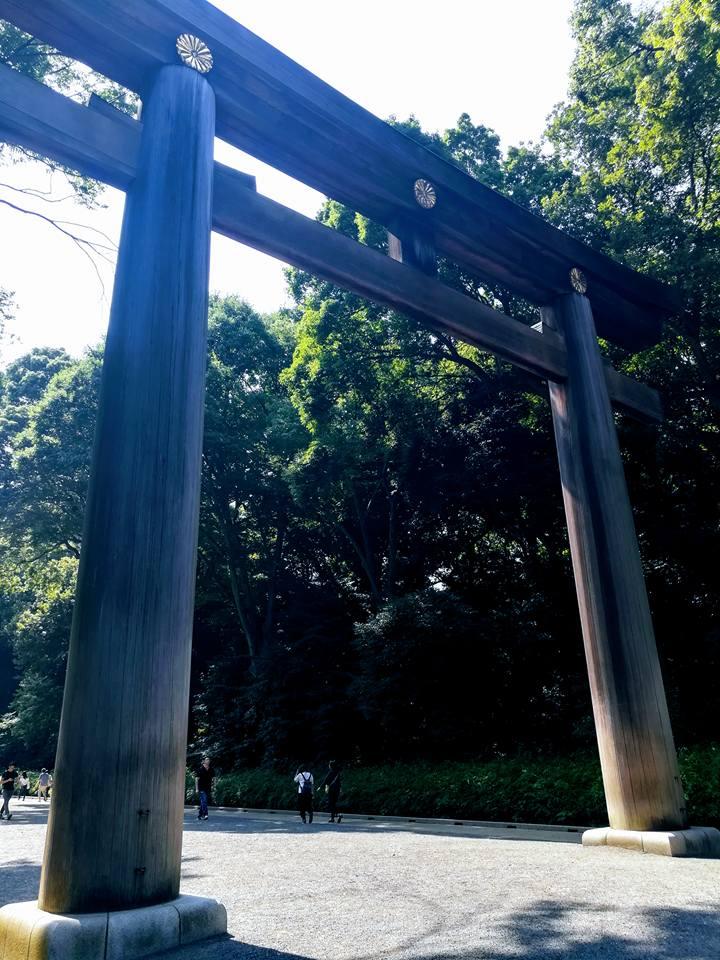 Le plus haut torii du Japon, taillé dans un cèdre vieux de 1500 ans.